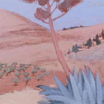 Моав. Цвет агавы