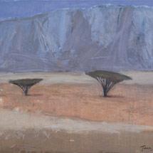 Пустыня Неггев. Берег Лотова моря