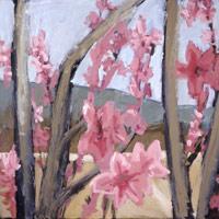 Цветут персики
