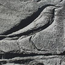 Птица Ур. Мединет-Абу. Храм Рамзеса.