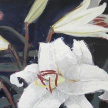 из цикла «Графемы сада»Белая лилияДиптих, часть I